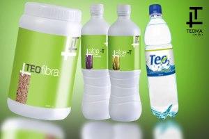 Productos de la Fase1 TEOMA